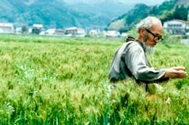 Masanobu Fukuoaka
