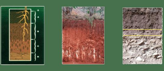 Factores de frmación del suelo, Ecoferti