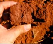 Consistencia del suelo, Ecoferti